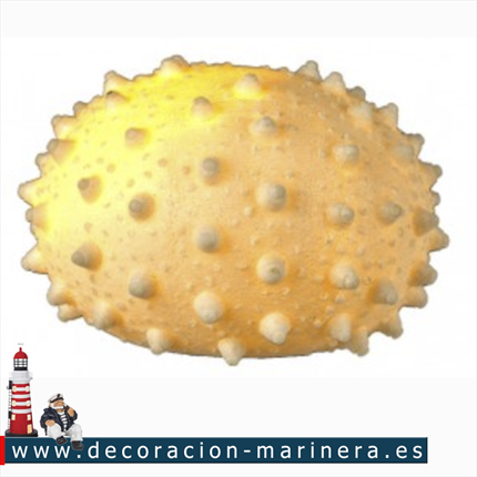 Pack de 2 Erizos de Mar con LED